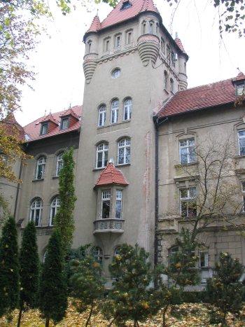 Zamek Osieczna 2007